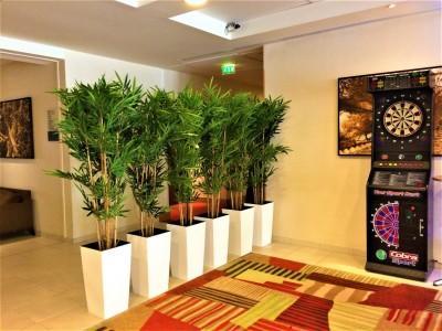 Location de bambou artificiel - null