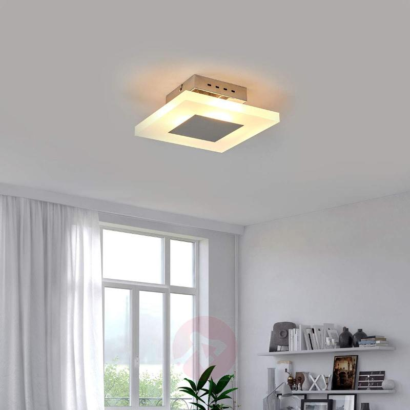 Katleen LED Wall and Ceiling Light - Ceiling Lights