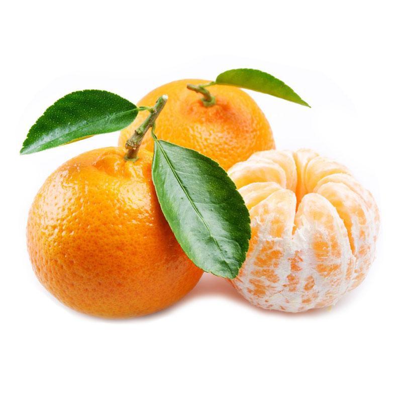 Tangerine Peel Extract - diosmin powder