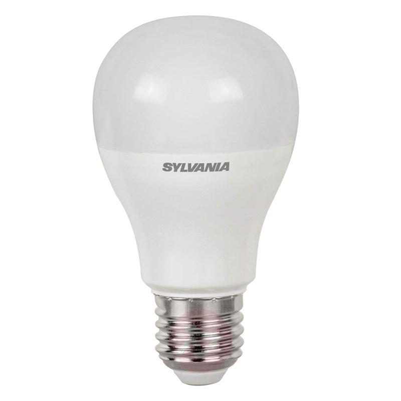 E27 7 W 865 LED bulb, matt - light-bulbs