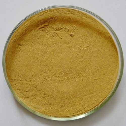 Zirconium Nitride powder - Tr-ZrN
