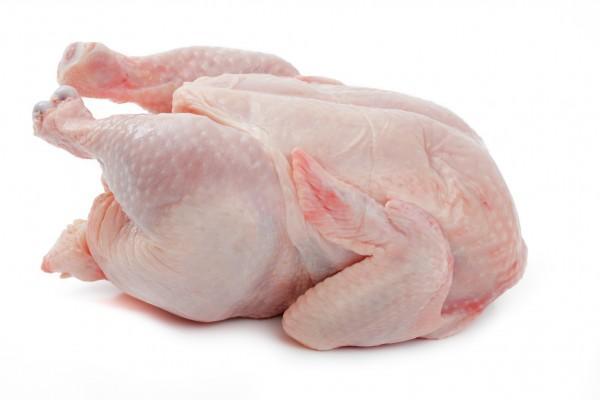Frozen Chicken  - Exportação de Frango Congelado