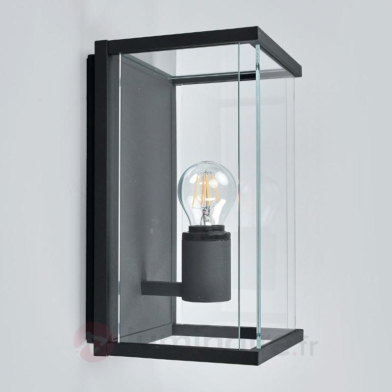 Applique ext. Annalea avec abat-jour en verre IP54 - Toutes les appliques d'extérieur