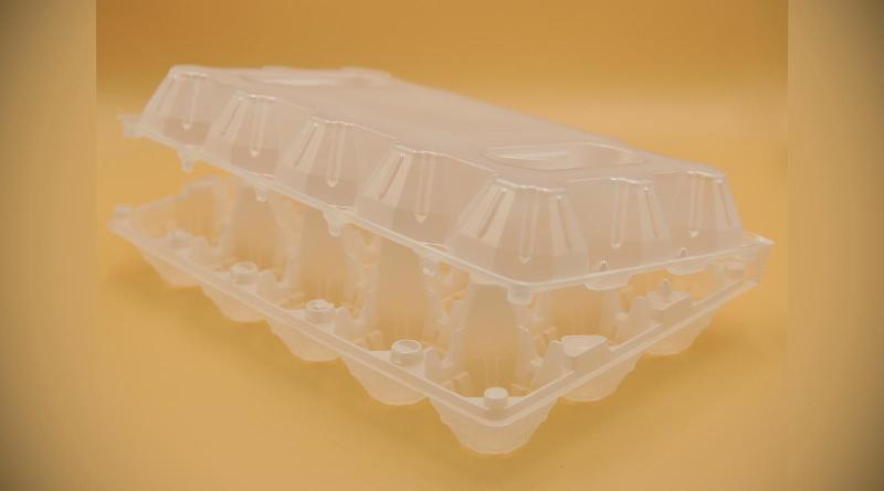 Food package - Egg tray for 15 chicken eggs