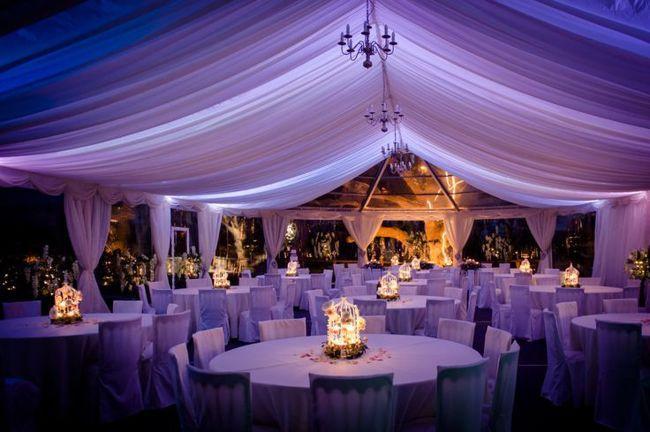 Elegant Marquee Interiors -