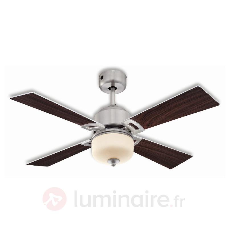 Ventilateur de plafond LED Athena - Ventilateurs de plafond lumineux