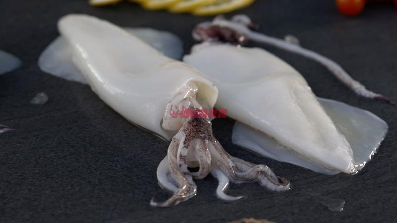 Calamaro Orientale Pulito U/5 Congelato Frostlab - Ittico - Molluschi bivalvi e gasteropodi