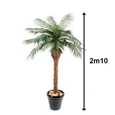 Location de Palmier artificiel - null