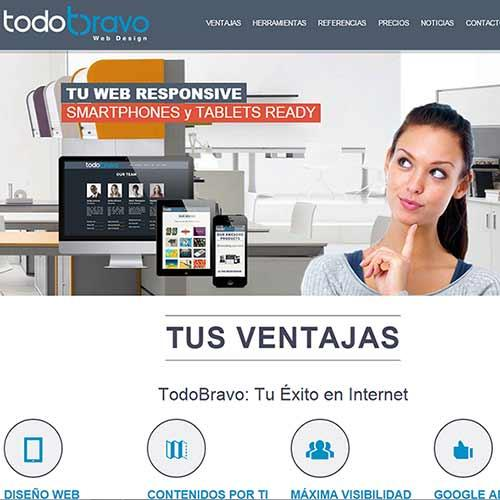 Páginas Web Corporativa - Web de empresa - Diseño y Desarrollo a Medida