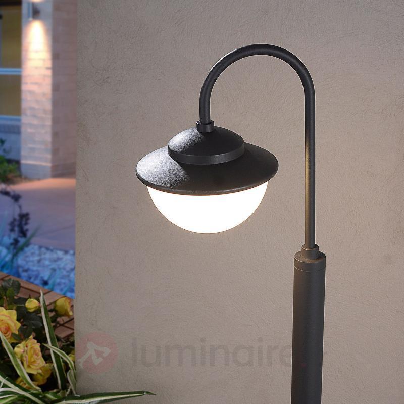 Borne lumineuse LED Pinara forme courbée - Bornes lumineuses LED