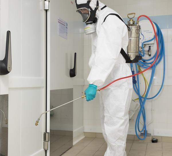 La lutte contre les mites passe par la prévention - Pest Control
