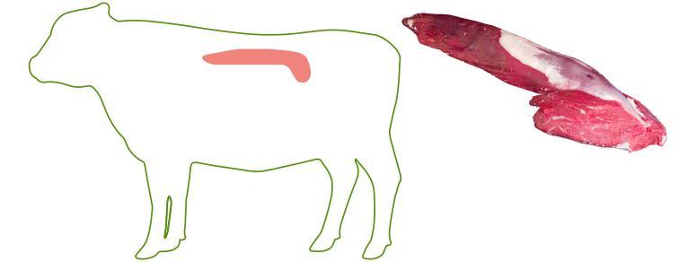 Tenderloin - Cuts of Beef