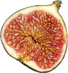 Figue - Fruits entiers et jus