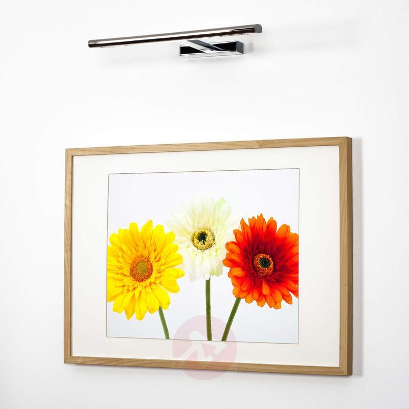 Luciana LED Picture Light Modern - Picture Lights
