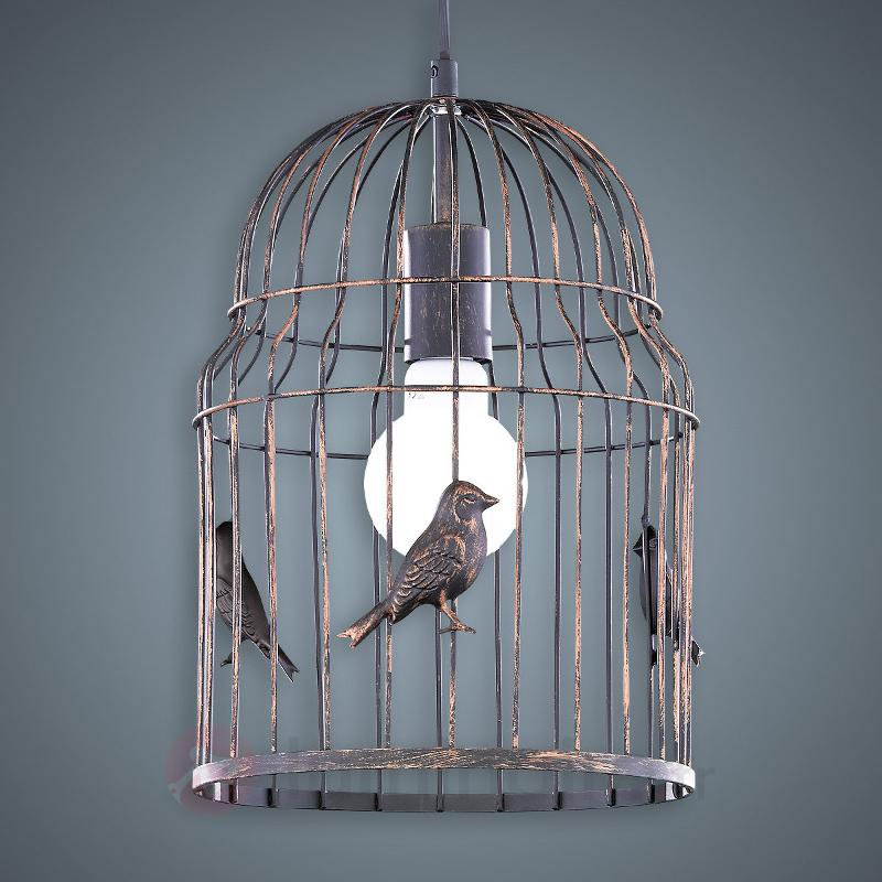cage oiseaux entreprises. Black Bedroom Furniture Sets. Home Design Ideas