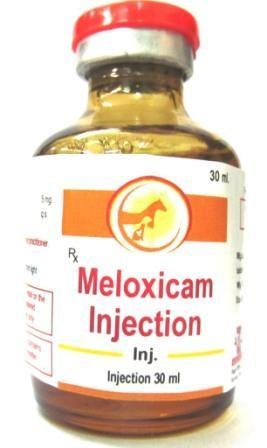Veterinary Meloxicam Injection - Veterinary Meloxicam Injection