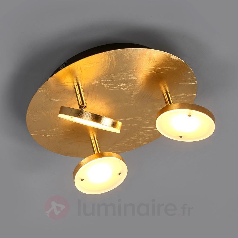 3 réflecteurs pivotables - plafonnier LED Tina - Plafonniers LED