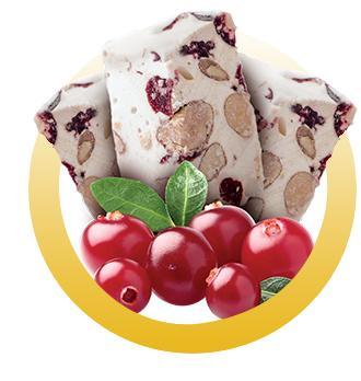 NOUGAT CRAMBERRIES - Nougat artisanal aux cramberries