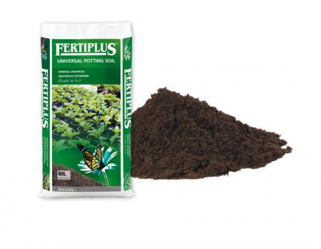 Universal Potting Soil 70/30 - Substrates