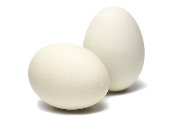 White, Brown eggs -