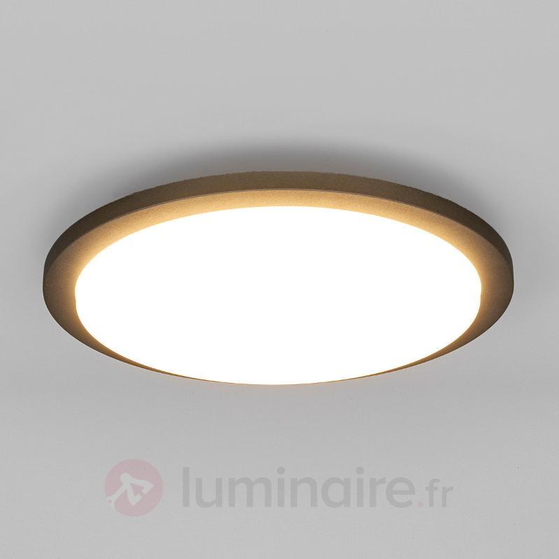 Plafonnier d'extérieur LED Benton - null