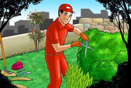Συντήρηση κήπων -