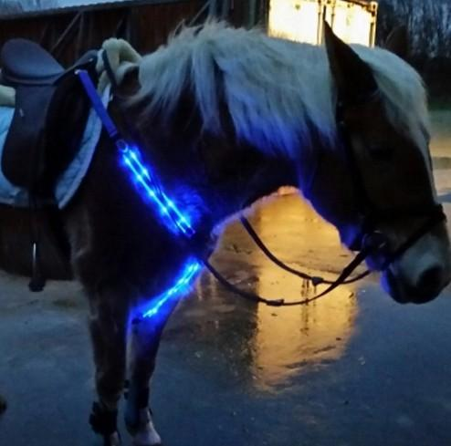 led horse leash USB rechargeable  - USB rechargeable leash horse harness