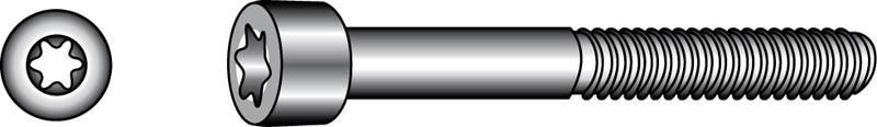 Gewindefurchende Zylinderschrauben, Form OE, TX - Material A2
