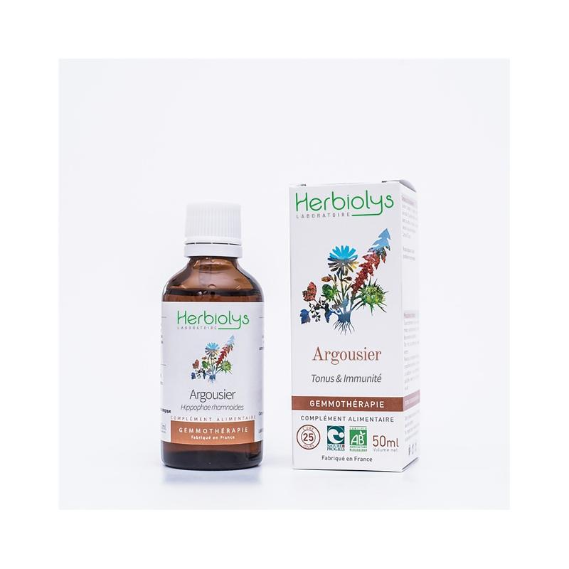 Argousier Hippophae/Elaeagnus rhamnoides - Gemmothérapie