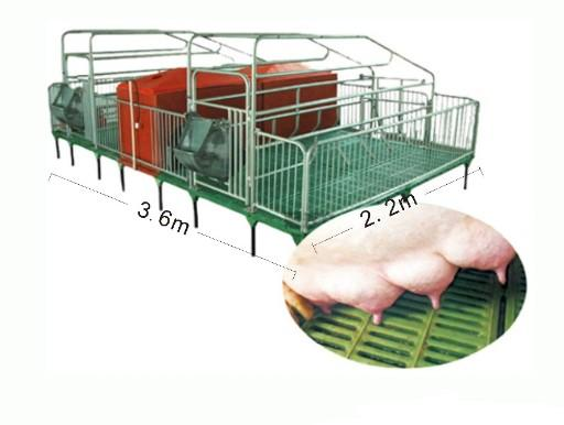 3.6*2.2*1m Sow/pig Farrowing Crate  - piglet/piggery weaving stall/pen/crate