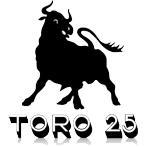 Toro 25 FIBER EvO - Tubo rinforzato in fibra di vetro - null