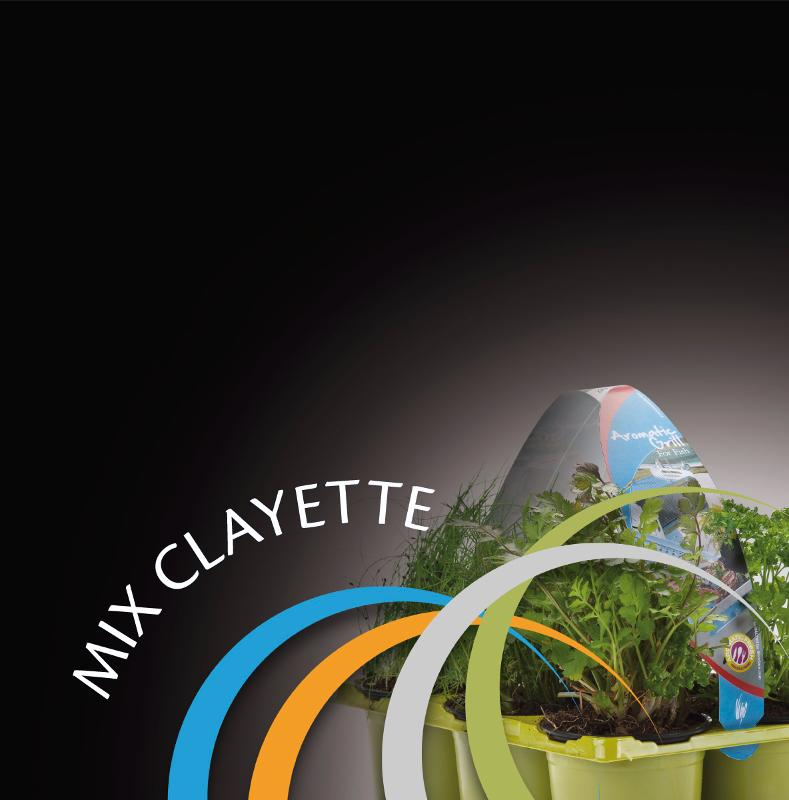 MIX CLAYETTE - null