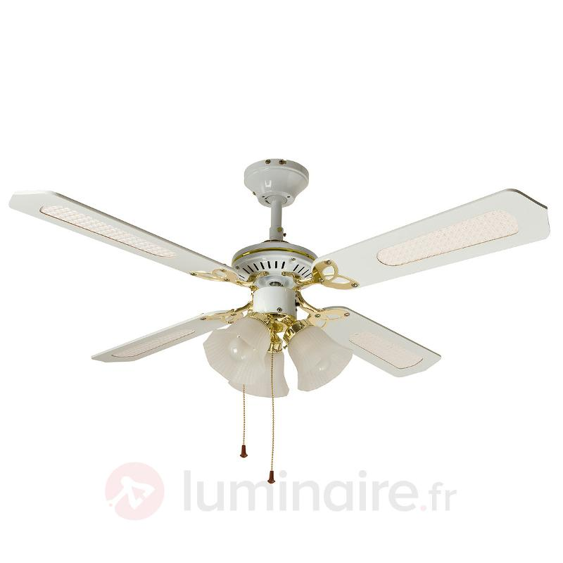 Ventilateur de plafond CALICE 3 lampes, blanc - Ventilateurs de plafond lumineux
