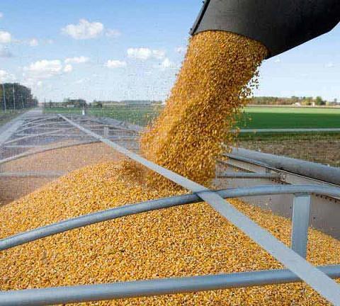 Перегрузка зерновых