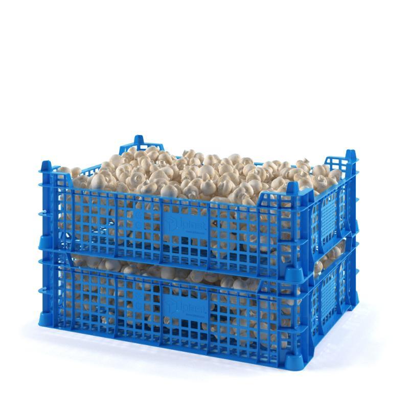 Mushroom crate - Art.: 12.415