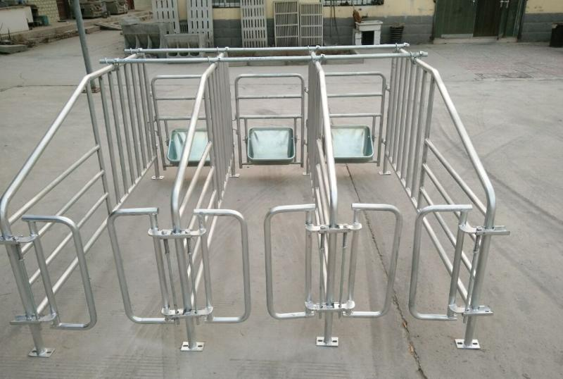 Sow limited crate/ Gestation/stall/pen - Animal Cages