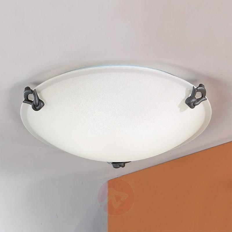 Classic Ceiling Light with Matte Glass - Ceiling Lights