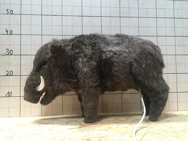 boar 40 cm - null