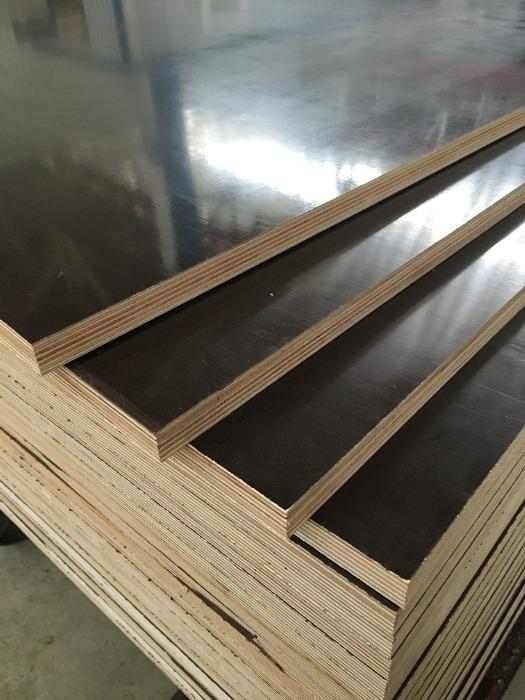 Film-faced plywood - SUNBIRCH
