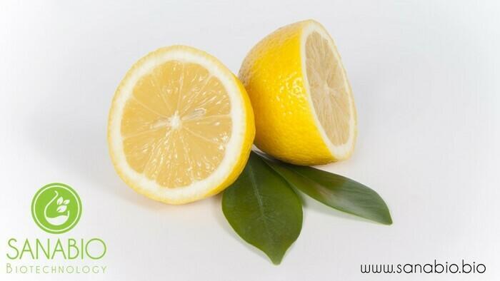 Zitronenextrakt, BIO - null