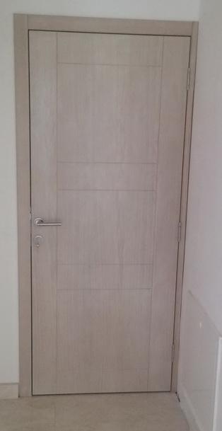 Veneered doors -