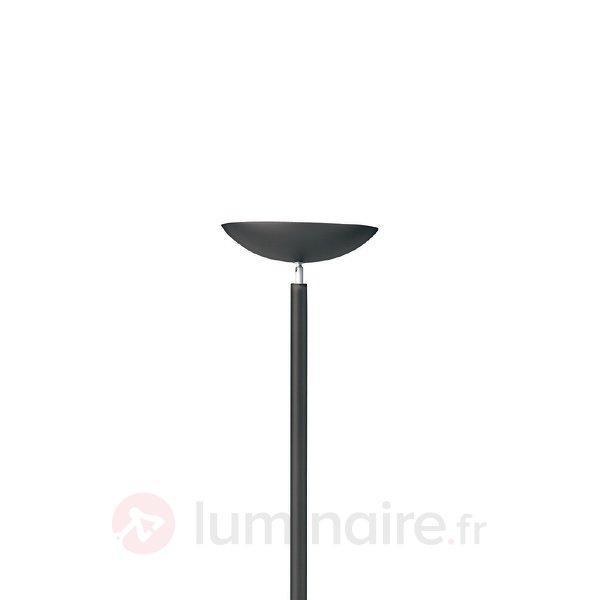 Simple lampadaire halogène FIRST, noir - Lampadaires à éclairage indirect