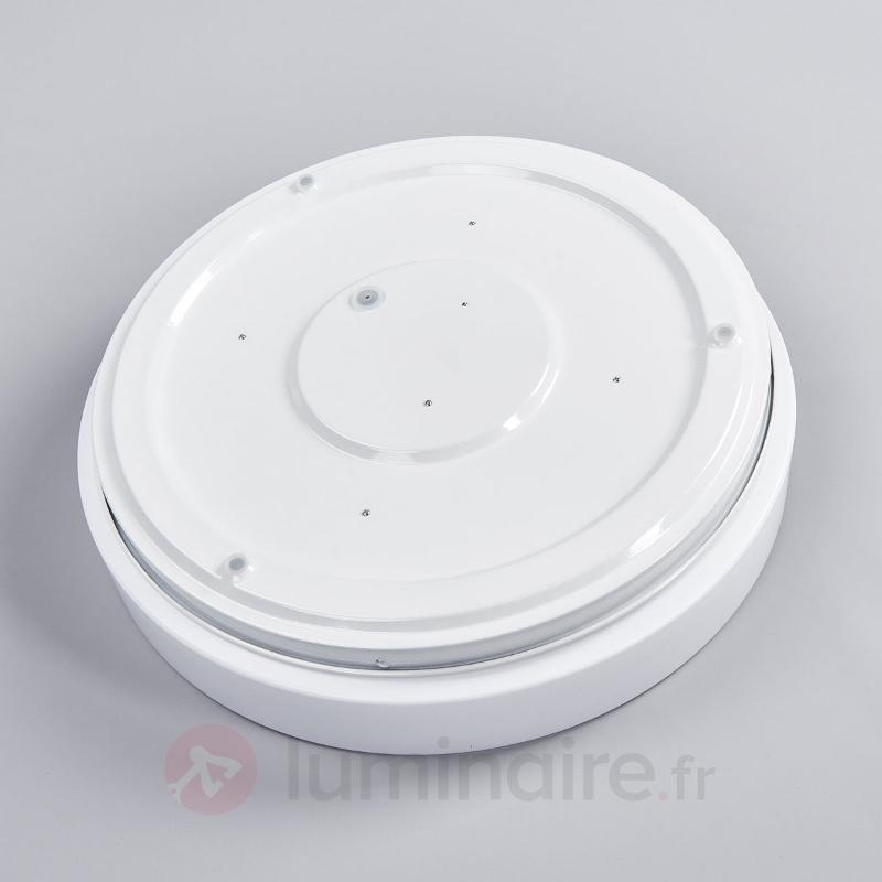Plafonnier LED pour salle de bain Cuneo - Salle de bains