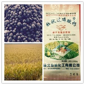 "Superfosfato granular ""tarjeta Hanjiang"""