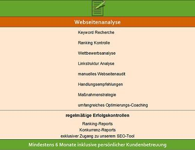 Bio-SEO Webseitenanalyse