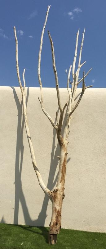 arbre mort ref 156 deco nature france. Black Bedroom Furniture Sets. Home Design Ideas