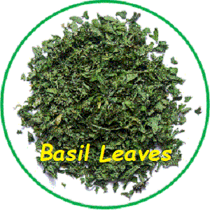 Basil Leaves, (Ocimum bsilicum , L.) - Prime quality, hand-picked air dried leaves of Sweet Basil