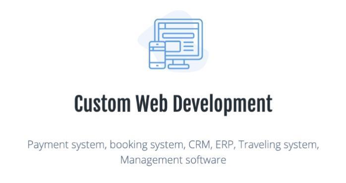 Custom Web Development  -