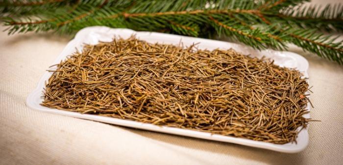 Spruce needles  - Dried spruce needles