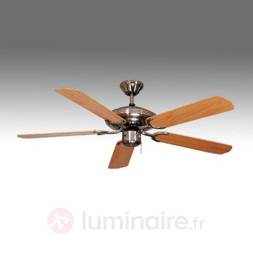 Ventilateur de plafond Steel-Star 103 cm - Ventilateurs de plafond